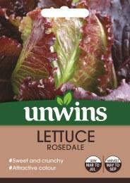 Lettuce (Cos) Rosedale