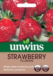 Strawberry Florian