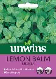 Herb Lemon Balm Melissa