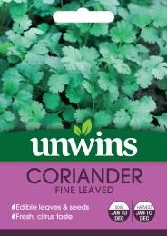 Herb Coriander Fine Leaved