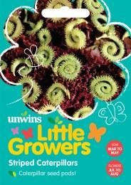 Little Growers Striped Caterpillars