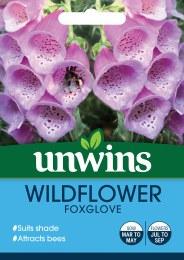 Wildflower Foxglove