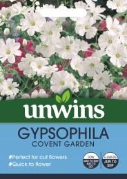 Gypsophila Covent Garden
