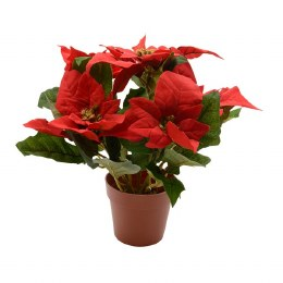 Christmas Poinsettia in Pot Red 45x33x28cm