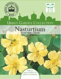 Nasturtium Whirlybird Cream