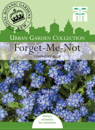 Forget Me Not Symphony Blue