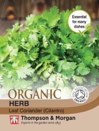 Herb Coriander Leaf Organic