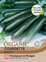 Courgette Dunja F1 Hybrid Organic