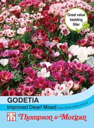 Godetia Improved Dwarf Mix