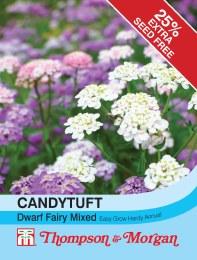 Candytuft Dwarf Fairy Mix