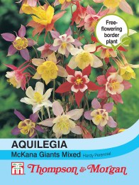 Aquilegia McKana Giants Mixed