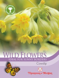 Wild Flower Cowslips Primula