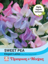 Sweet Pea Elegant Ladies