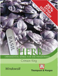 Herb Basil Crimson King