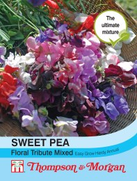 Sweet Pea Floral Tribute Mix