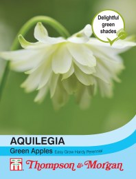 Aquilegia Greem Apples