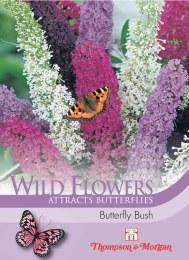 Wild Flower Butterfly Bush