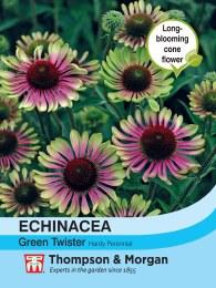 Echinacea Gr. Twister