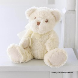 Add a Bailey Bear Teddy