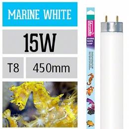 "Arcadia T8 Marine White 15 Watt 450mm 18"" Flourescent Bulb"