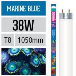 Arcadia Marine Blue Lamp T8 38W 1050mm