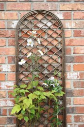 Arched Willow Panel - Small