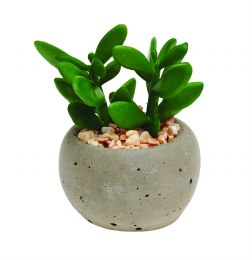 Artificial Mixed Succulent Plants