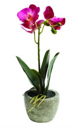 Artificial Orchid Plant Small