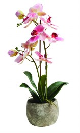 Artificial Orchid Plant Large