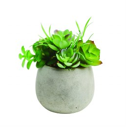 Artificial Potted Succulent