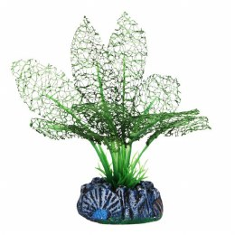 Betta 13cm Silk Grn Lace Plant