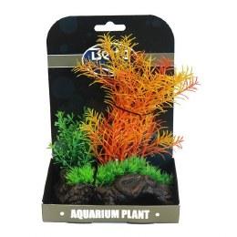 Mini Aquarium Plant Garden