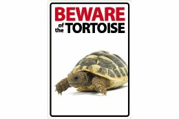 Beware of The Tortoise Sign 21cm x 15cm