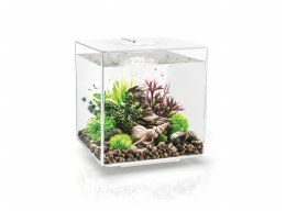 BiOrb Cube 30L in White with Multi-Coloured Remote Control Lighting