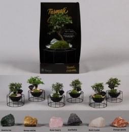 Bonsai Arrangement in Metal Bowl  With Gemstones