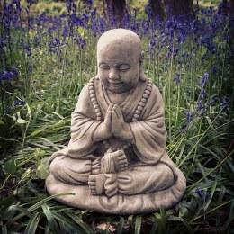 Buddha Praying B