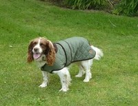 Quilted Dog Coat Green 40cm