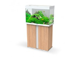 Ciano En Pro 80 Amber Wood W/White Cabinet