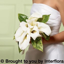 Calla Lily Bridesmaid Bouquet - Chic White