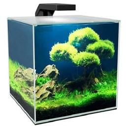 Ciano Aqua Cube 15L