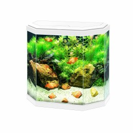 Ciano Aqua 30 Hex White With LED Lights & Filter