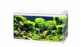 Ciano Aquarium Aqua 60 With Led Lights & White Lid 60cm x 30cm x 33.5cm