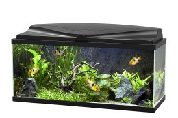 Ciano Aquarium Aqua 80 With LED Lights & Black Lid - 80cm x 30cm x 41.5cm