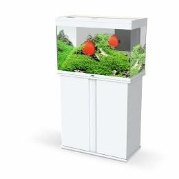 Ciano Emotions Pro 80 White Aquarium With White Trim Cabinet