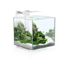 Ciano Nexus Pure Cube 15 With LED Lights