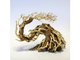 Aquarium Ornament Dragon Tree Small