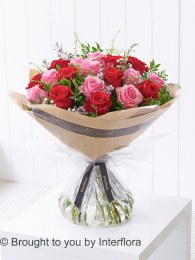 Dramatic Eighteen Mixed Roses - Perfect Valentine's Day Gift