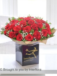 Dramatic Two Dozen Red Roses - Perfect Valentine's Day Gift