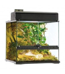 Exo Terra Glass Terrarium Small Wide 18 x 18 x 18in