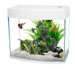 Fish R Fun Panoramic Fish Tank With Pump Filter & Light 14 Litre White